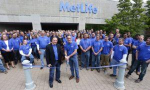 Metlife Employee Benefits